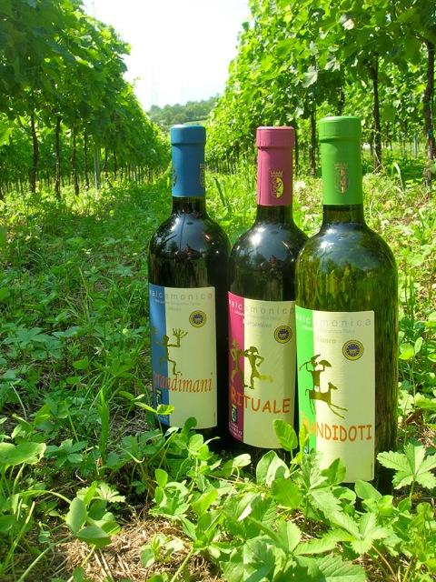 Le nostre tre bottiglie